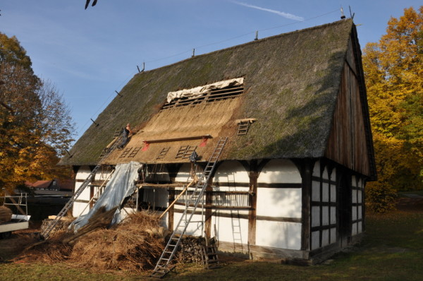 Im LWL-Freilichtmuseum Detmold können Besucher noch bis zum Saisonende an diesem Samstag das alte Bauhandwerk Reetdecken beobachten. Foto: LWL/Michels
