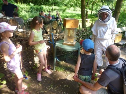 Eine Imkerin erläutert interessierten Kindern die Herstellung von Honig anhand ei- nes Bienenstocks
