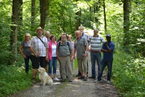 """Das Foto zeigt einen Teil der Wandergruppe der """"Bürger für Lemgo"""" (BfL) während der Erkundung des Rundwanderweges an der Silbermühle unterhalb der Velmerstot in Horn/Bad Meinberg."""