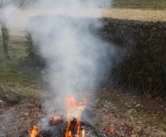 Gartenfeuer