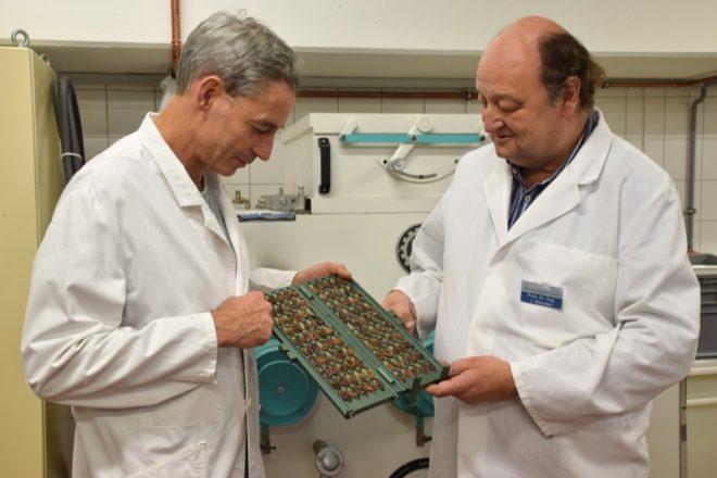 Im Schnitttest: Professor Jörg Stender (r.) und Industriemeister Axel Piepke von der Hochschule OWL prüfen den Fermentationsgrad von Kakaobohnen. Dazu werden die ursprünglich violettfarbenen Bohnen aufgeschnitten – wenn mindestens 80 Prozent der Bohnen eine braune Farbe angenommen haben, war die Fermentierung erfolgreich.